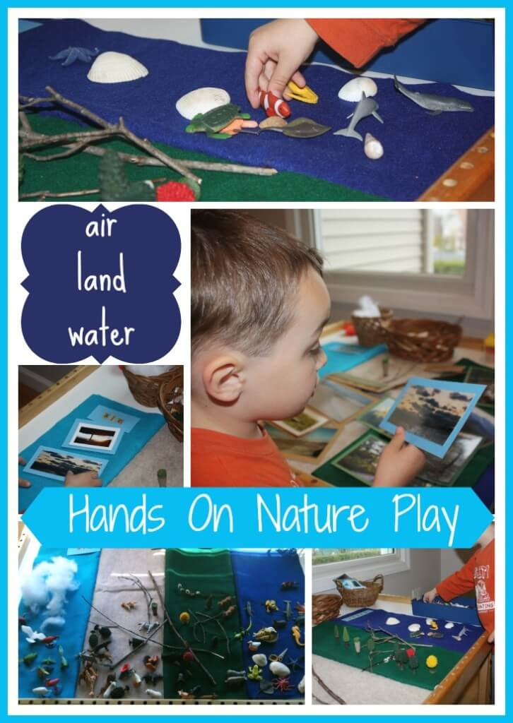 Air Land Water Nature Table