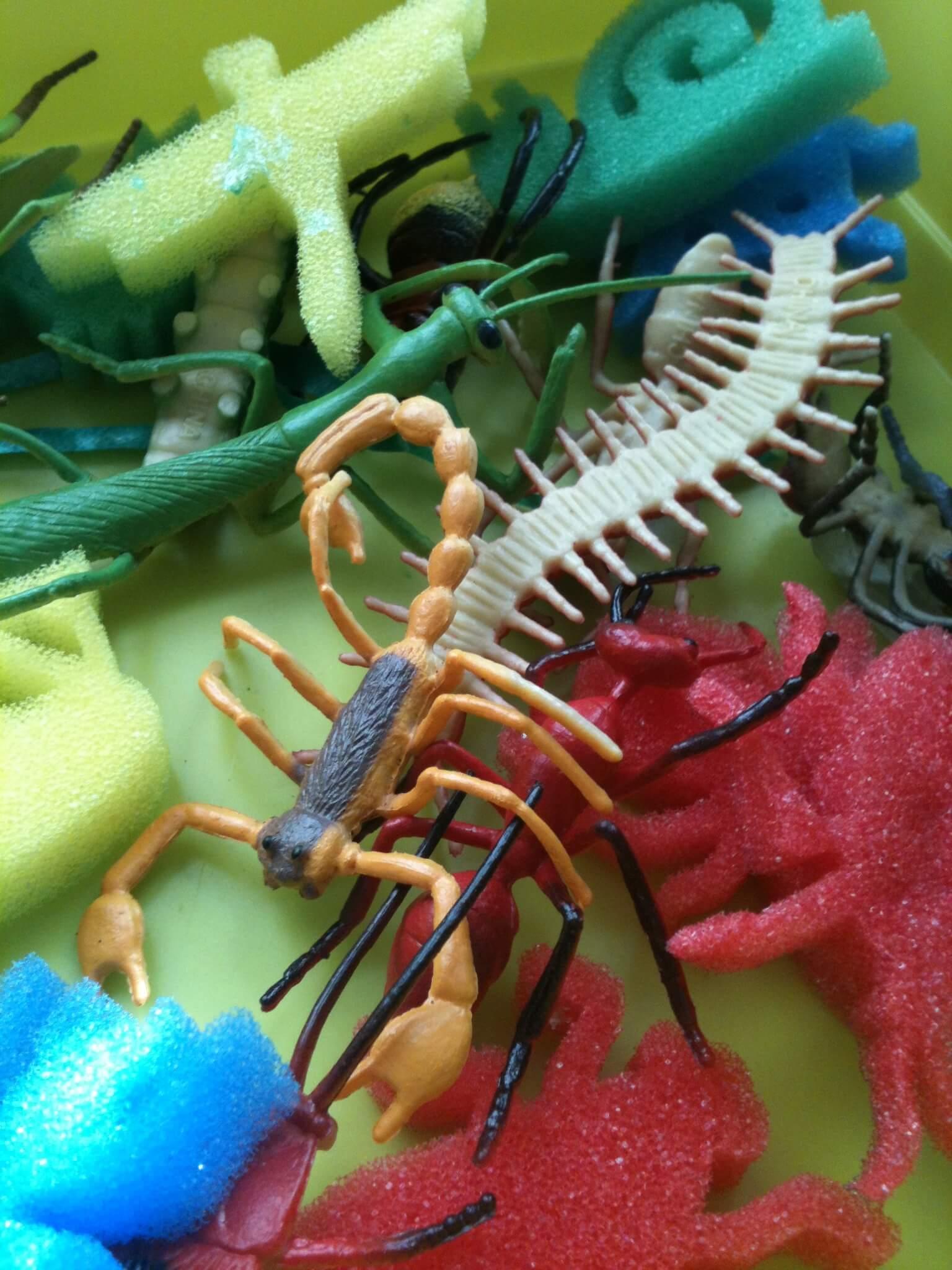buried bugs sensory bin bug bath and bug counting and