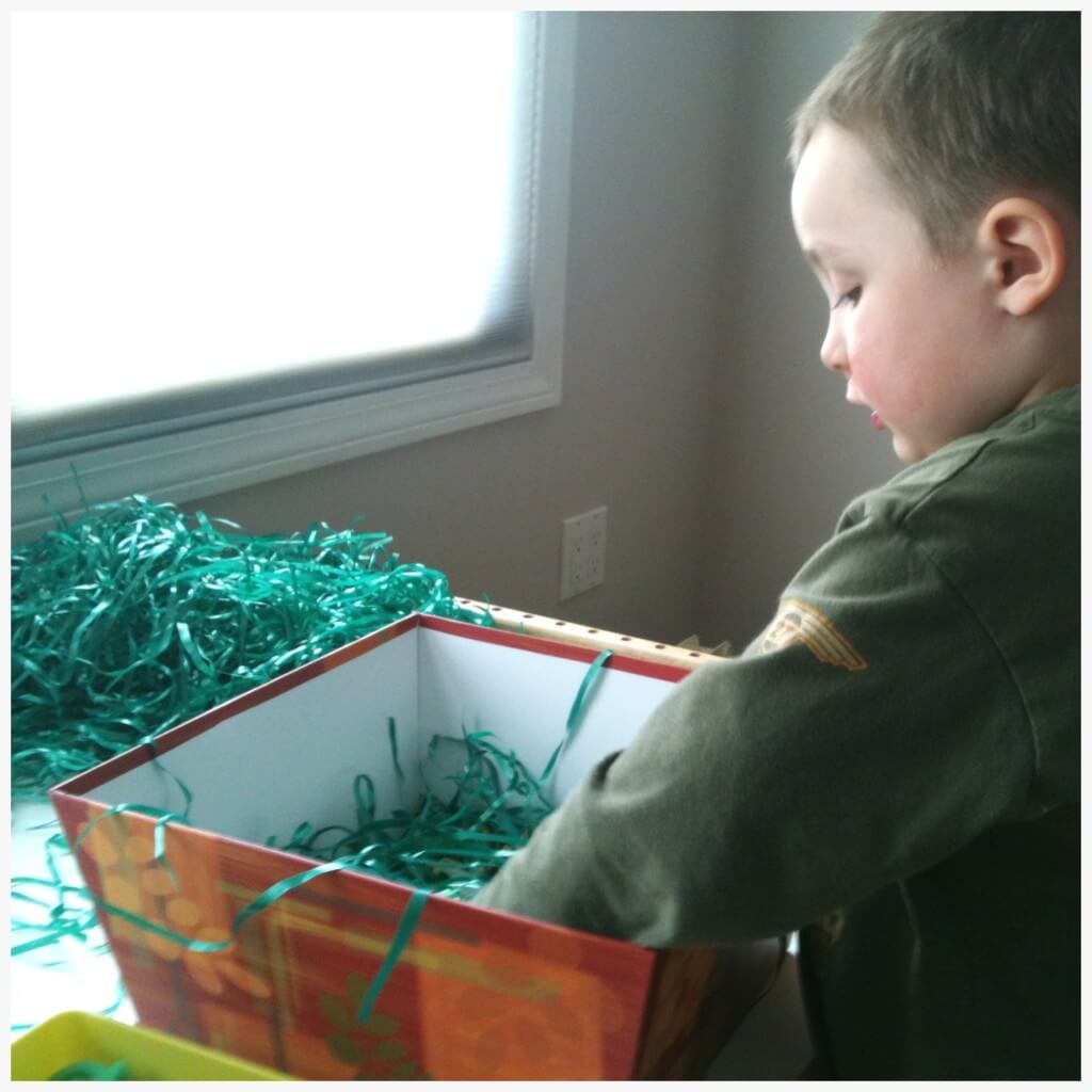 buried bugs sensory bin exploring