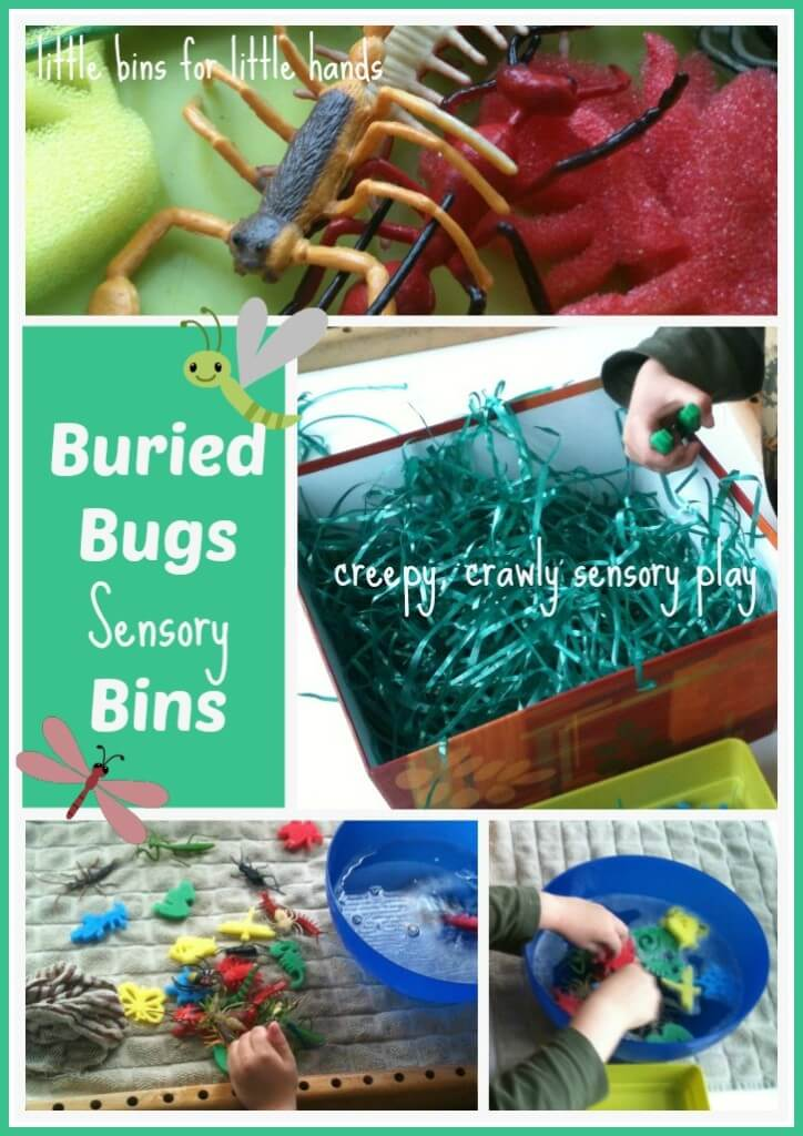 buried bugs sensory bins