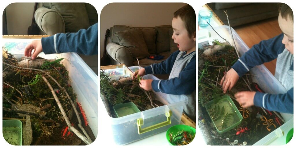 nature sensory bin play 1