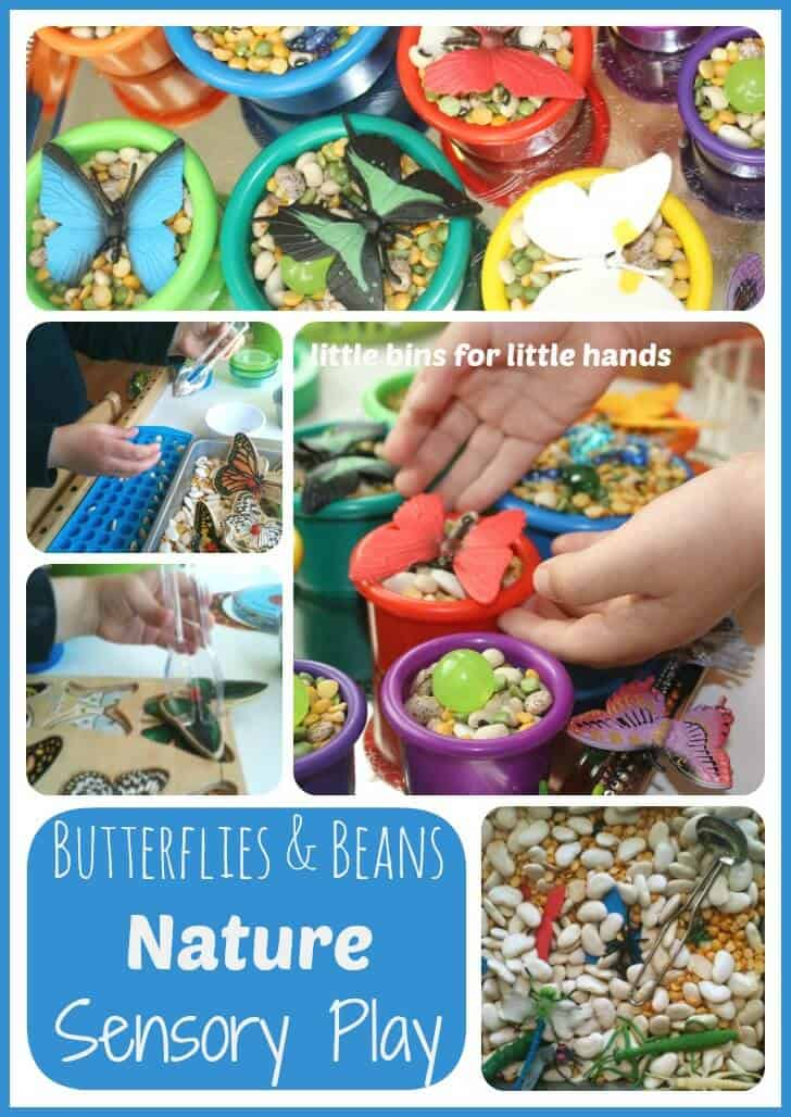 Butterflies Sensory Bin with Beans