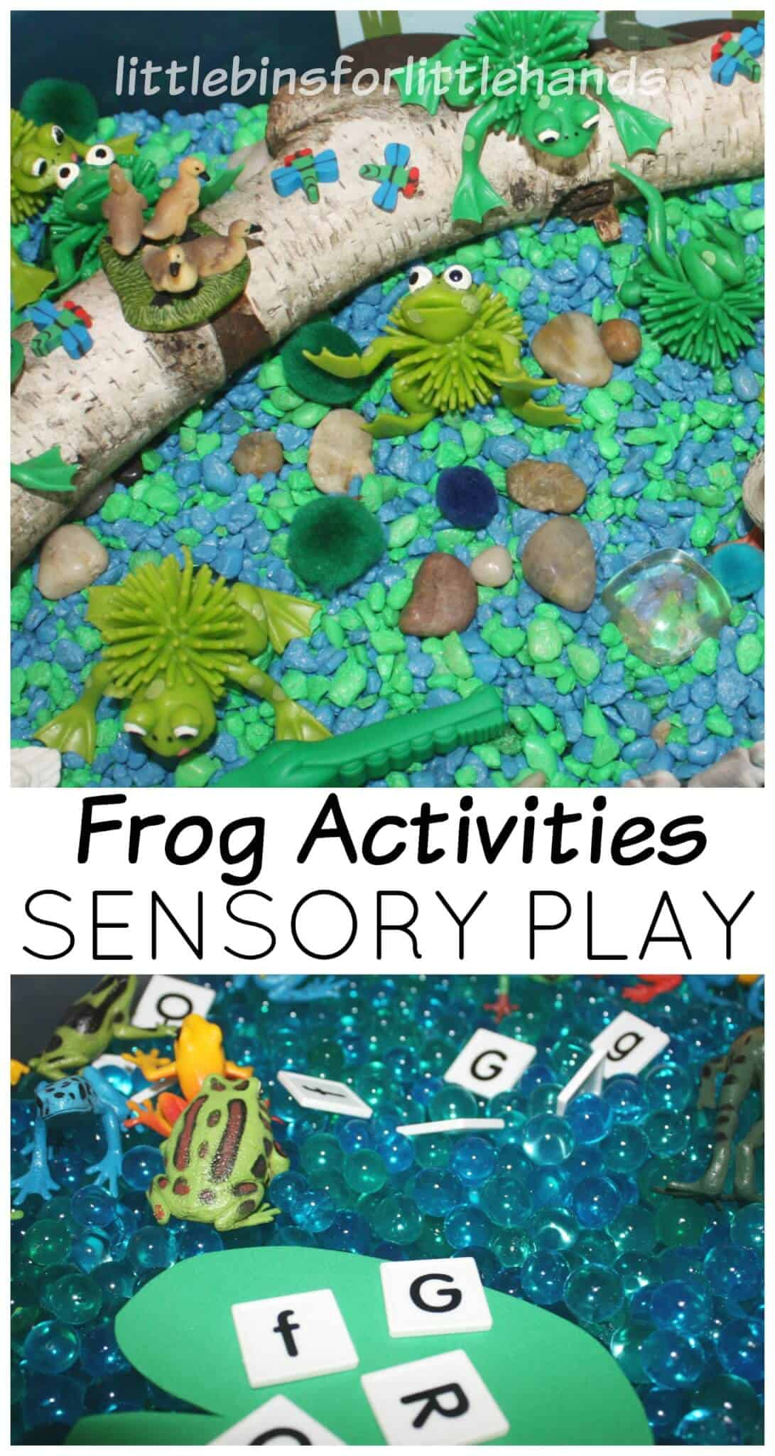 Frog Pond Sensory Bins for Spring Sensory Play