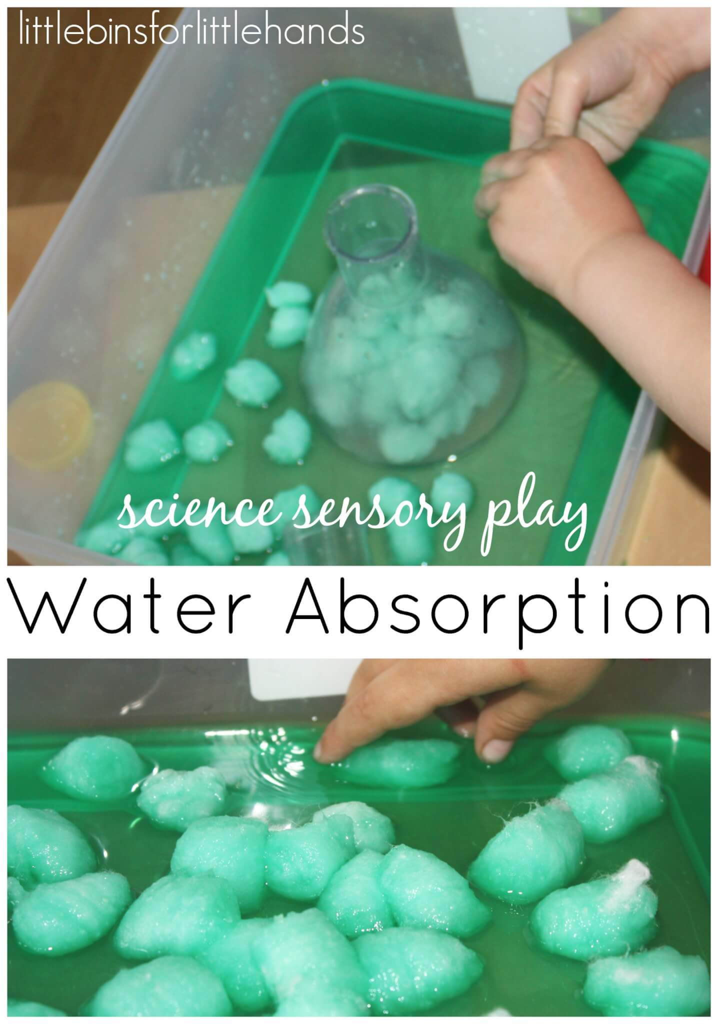 Water Sensory Science Experiment