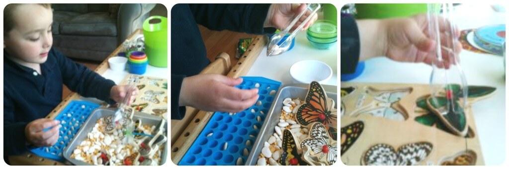 butterflies sensory bin fine motor activities