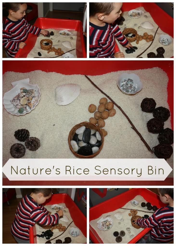 nature rice sensory bin