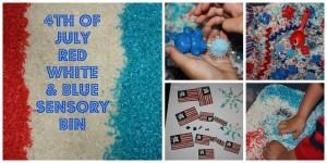 4th july sensory bin