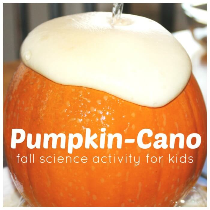 Pumpkin Volcano Pumpkin Cano Baking Soda Science