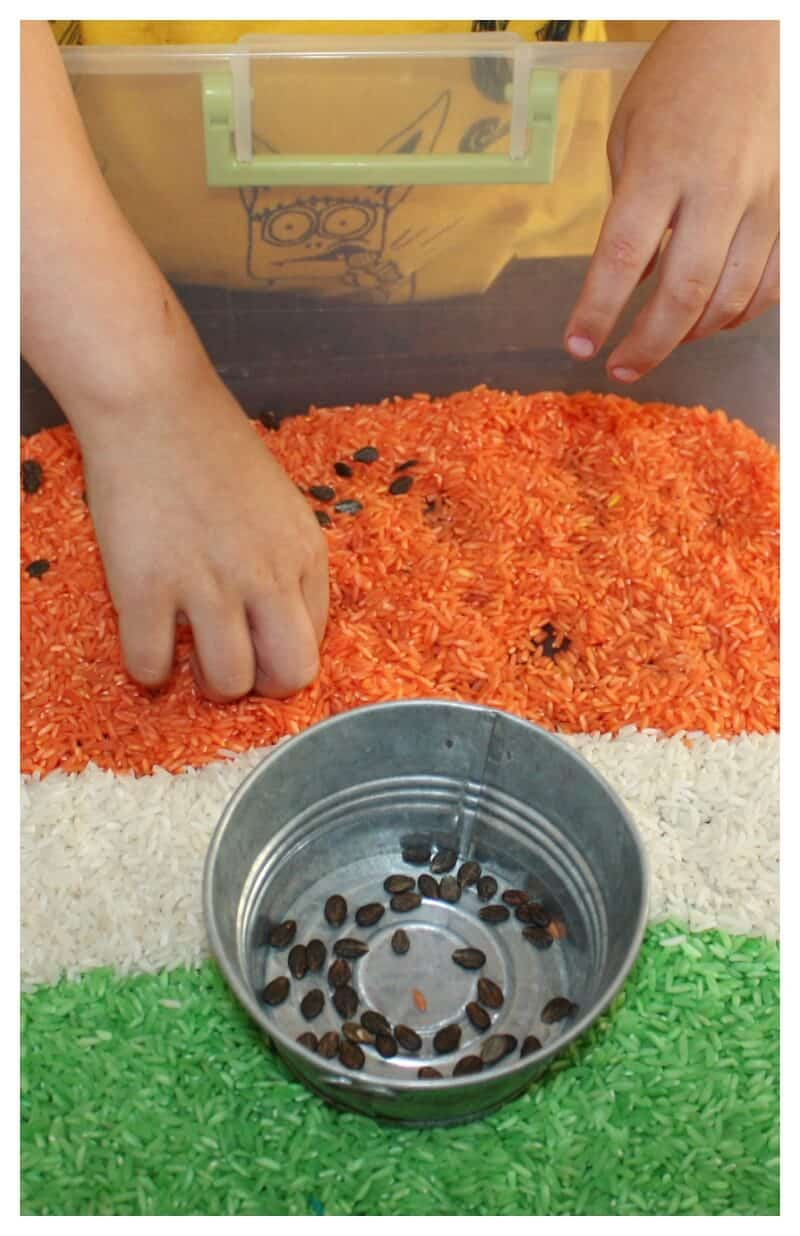 Wonderful Watermelon Rice Sensory Bin Play