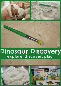 Dinosaur Discovery Table Explore Discover Play With Dinosaurs