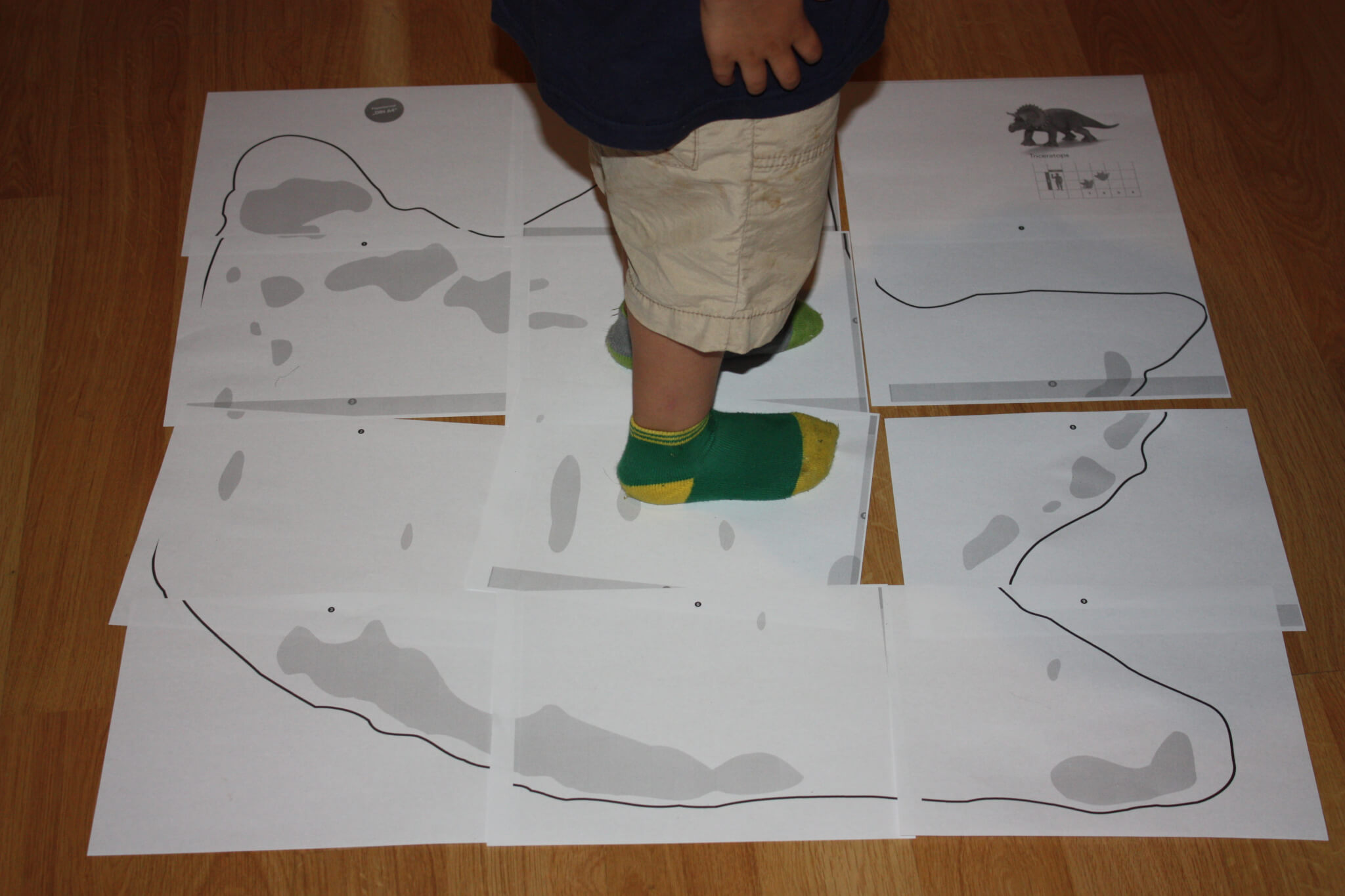 Giant dinosaur footprint template