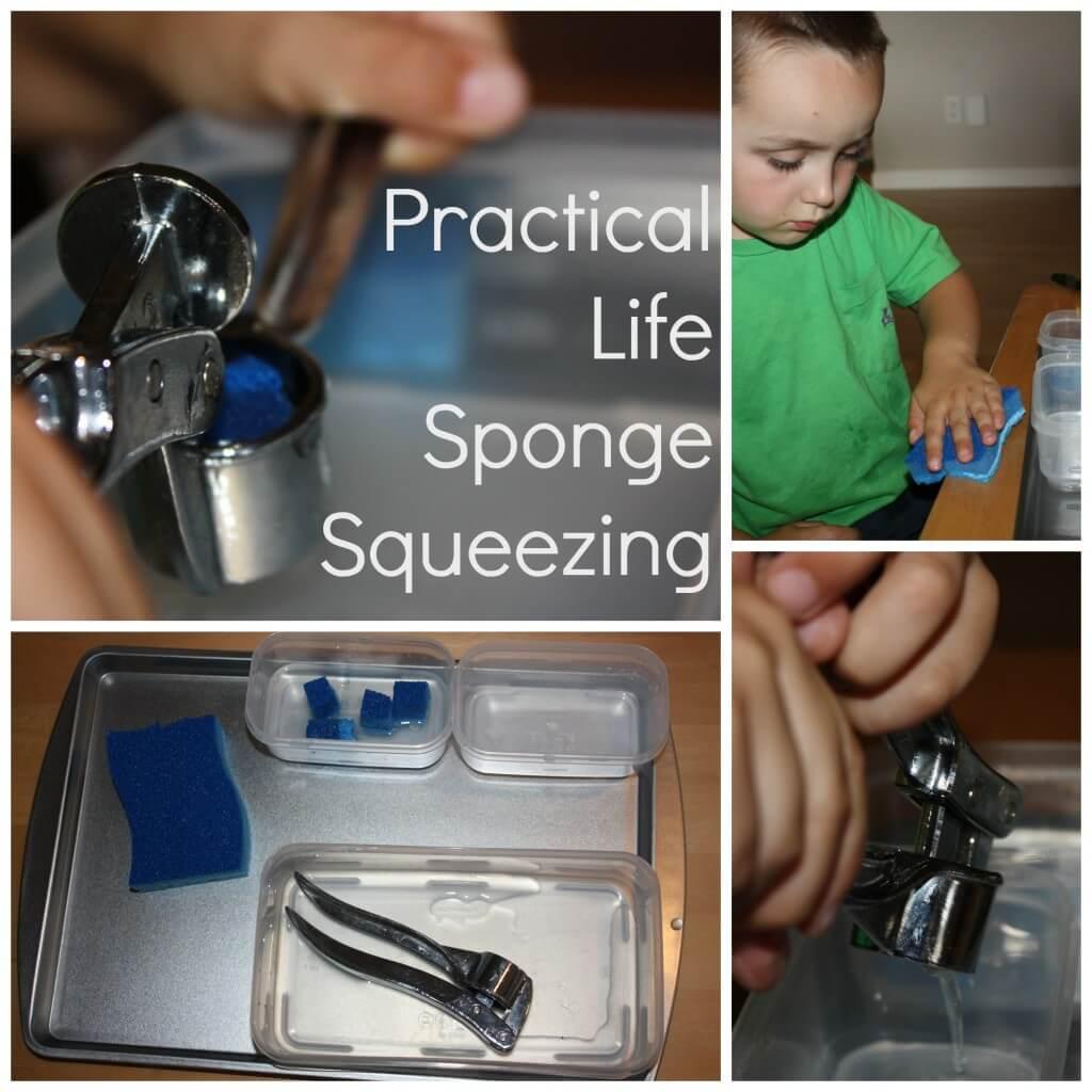 practical life sponge squeezing
