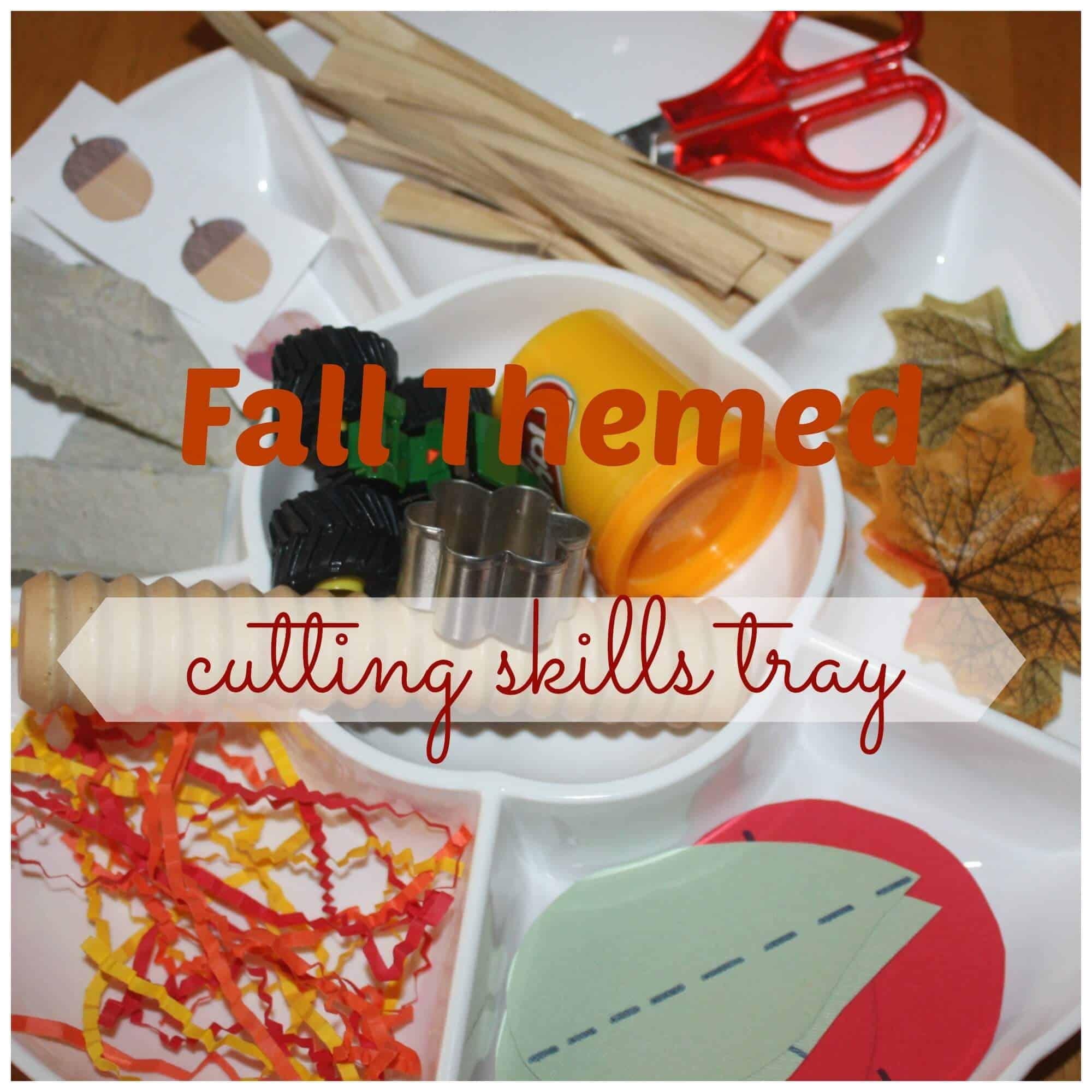 Fall Themed Cutting Skills Tray