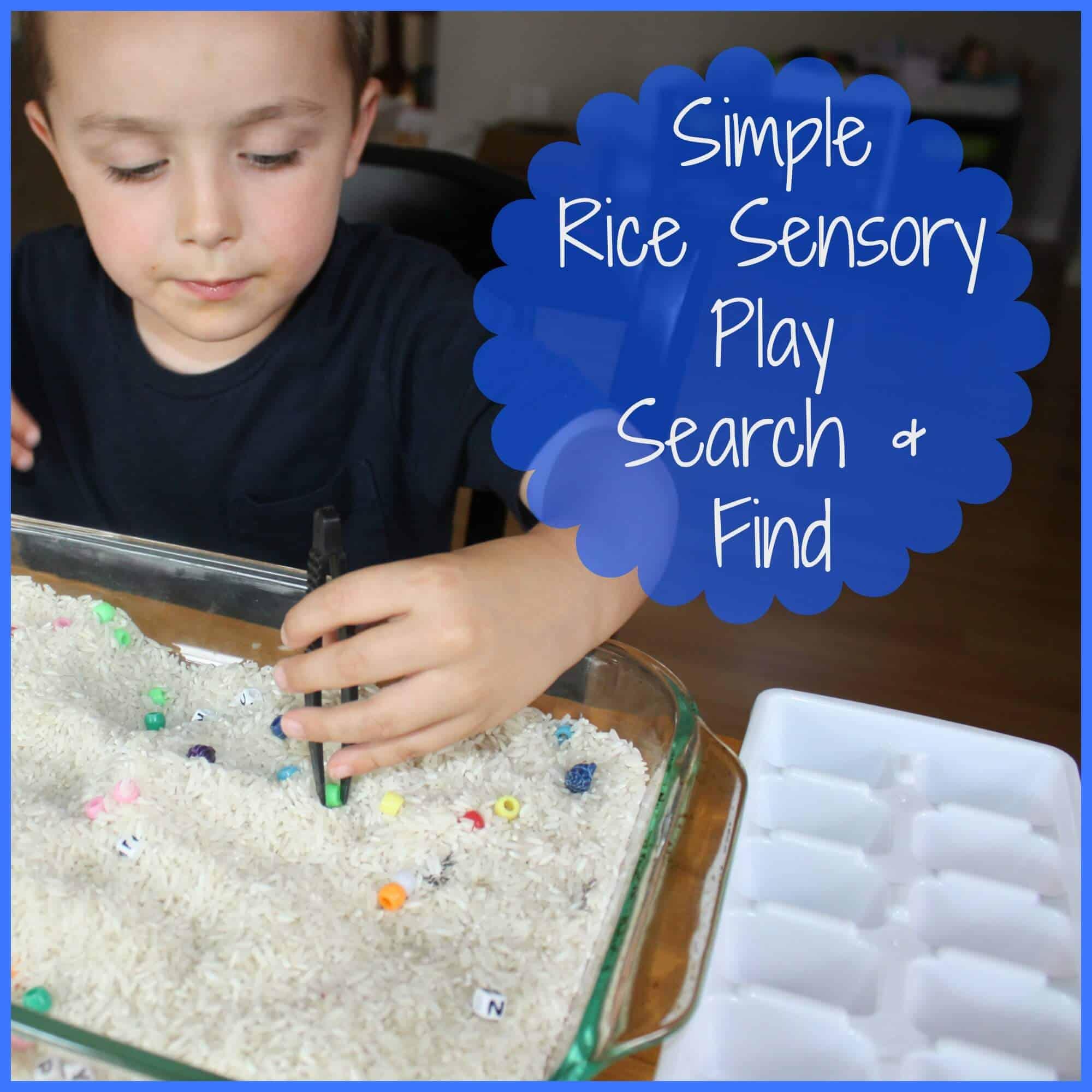 Search & Find Rice Sensory Bin