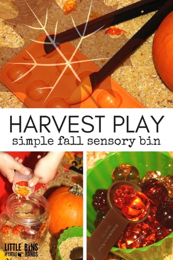 Simple Harvest Sensory Bin Play for Kids fall Activity
