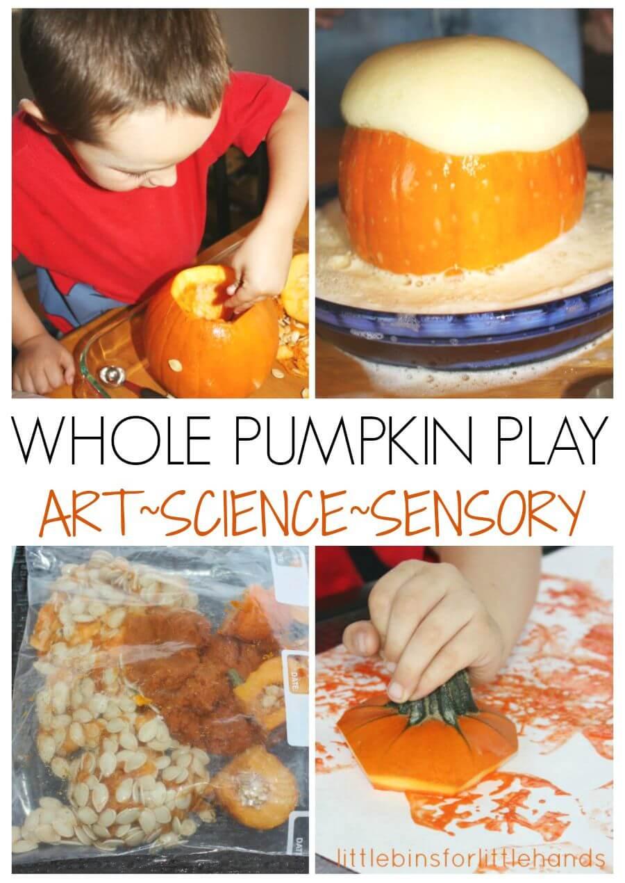 Pumpkin Activity  Whole Pumpkin Play Art Science Sensory Ideas