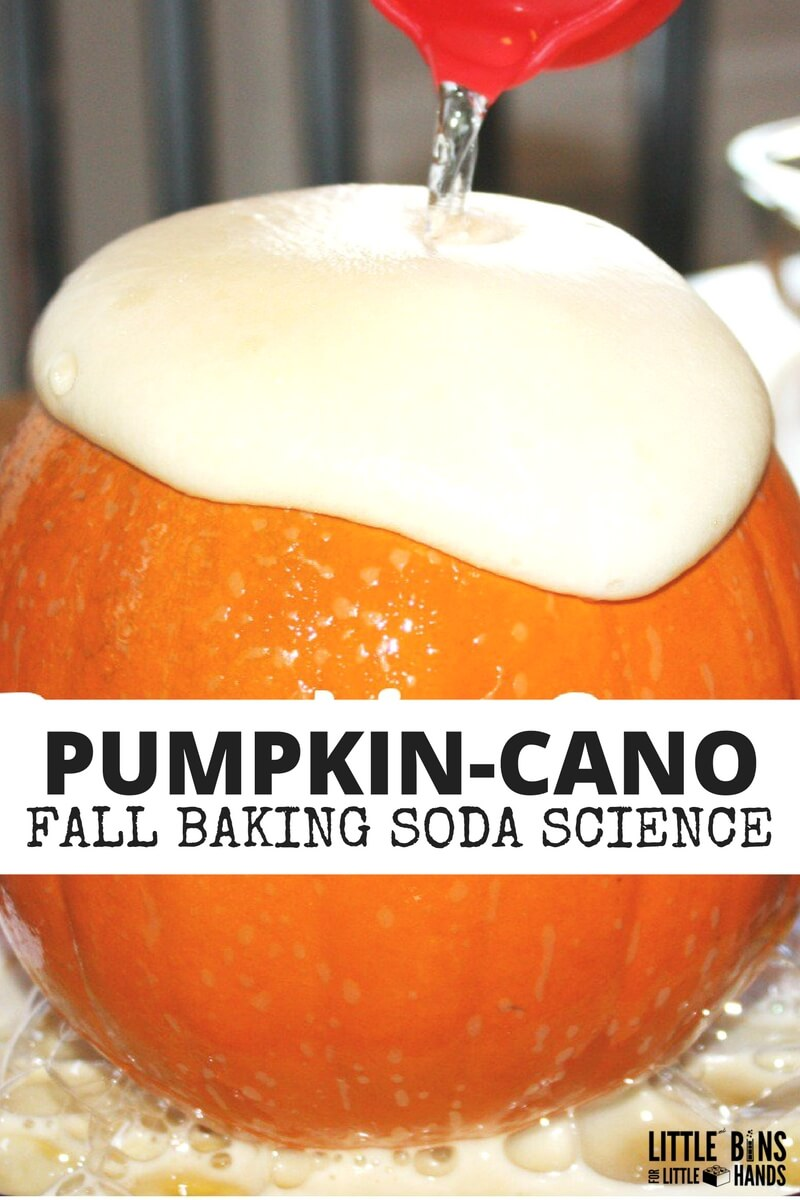 preschool pumpkin science activities pumpkin volcano science activity baking soda science 527