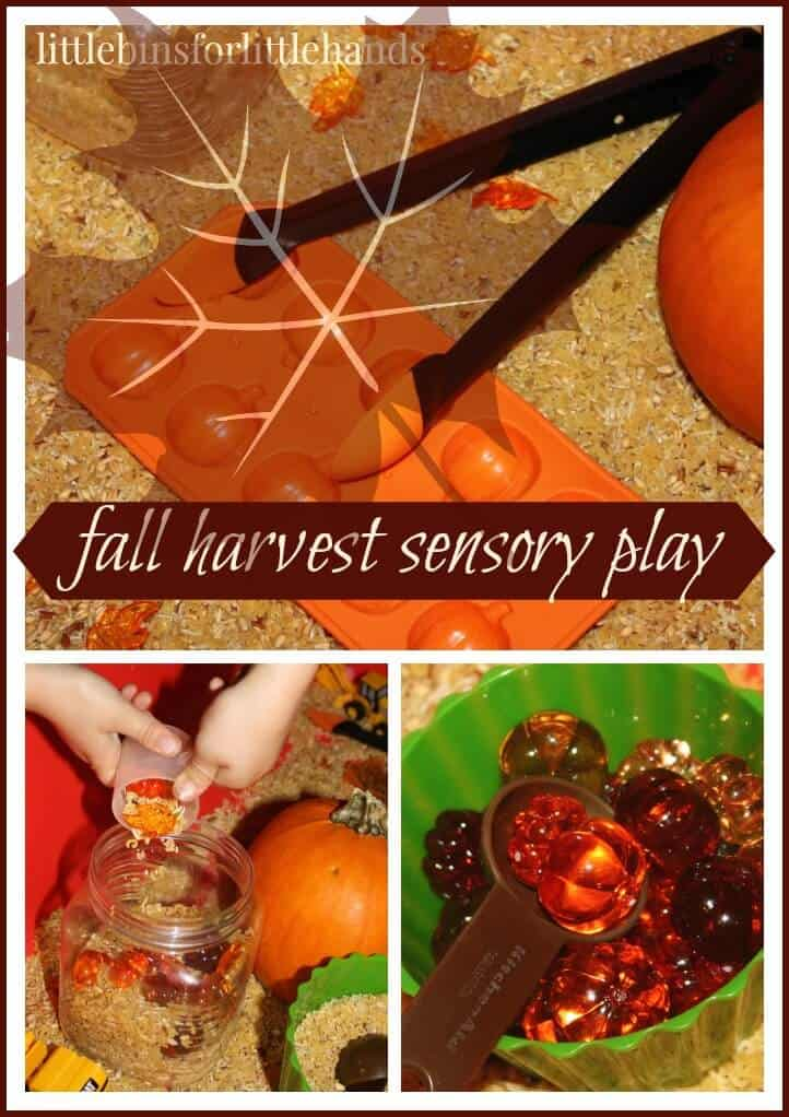Simple Harvest Sensory Bin For Fall Play