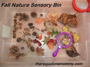 fall-nature-sensory-bin