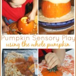 whole pumpkin sensory play early learning fall activities