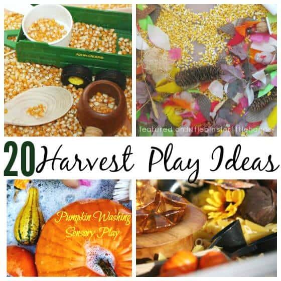 20 Harvest Sensory Play Ideas Fall Activties
