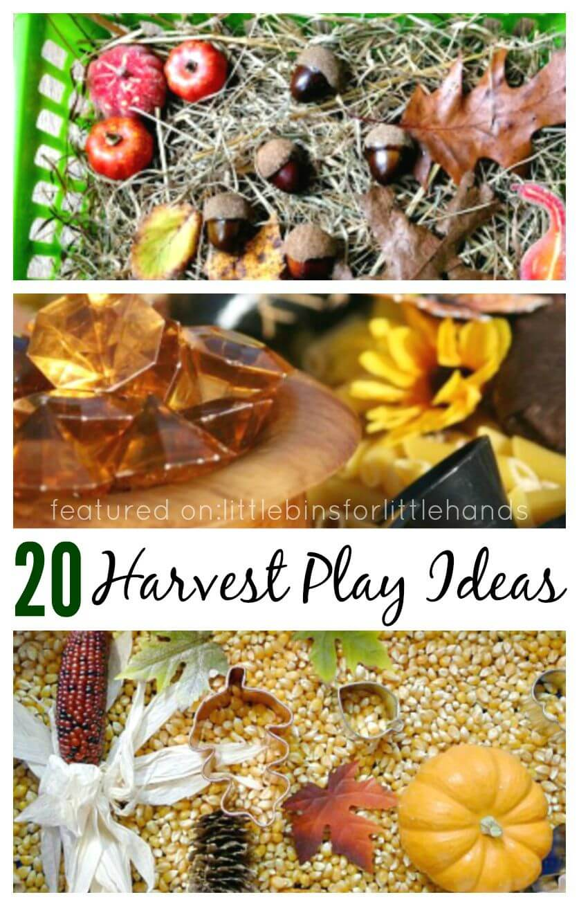 20 harvest Sensory Play Ideas Fall Activities Sensory Bins