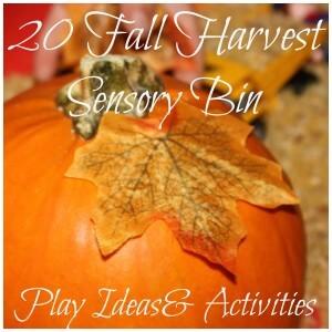 Fall Harvest Sensory Bin 20 + Round Up