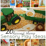 Harvest Theme Sensory Play Ideas