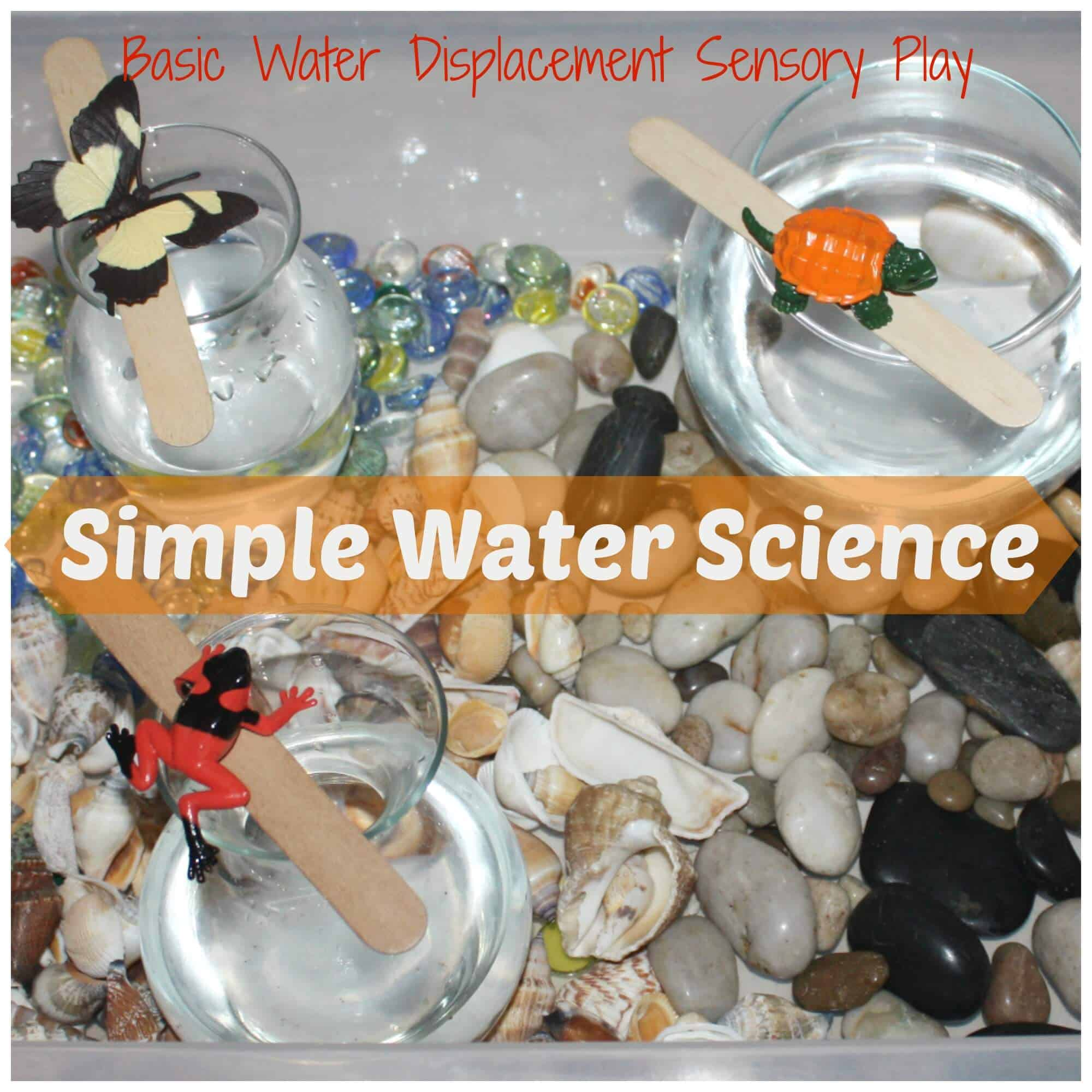 Simple Water Science Experiment Water Displacement Sensory Play