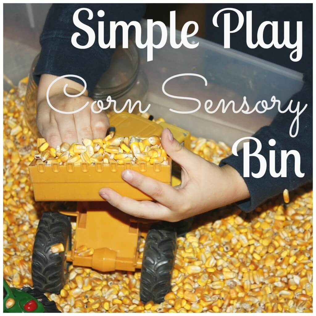 corn sensory bin play with tractor