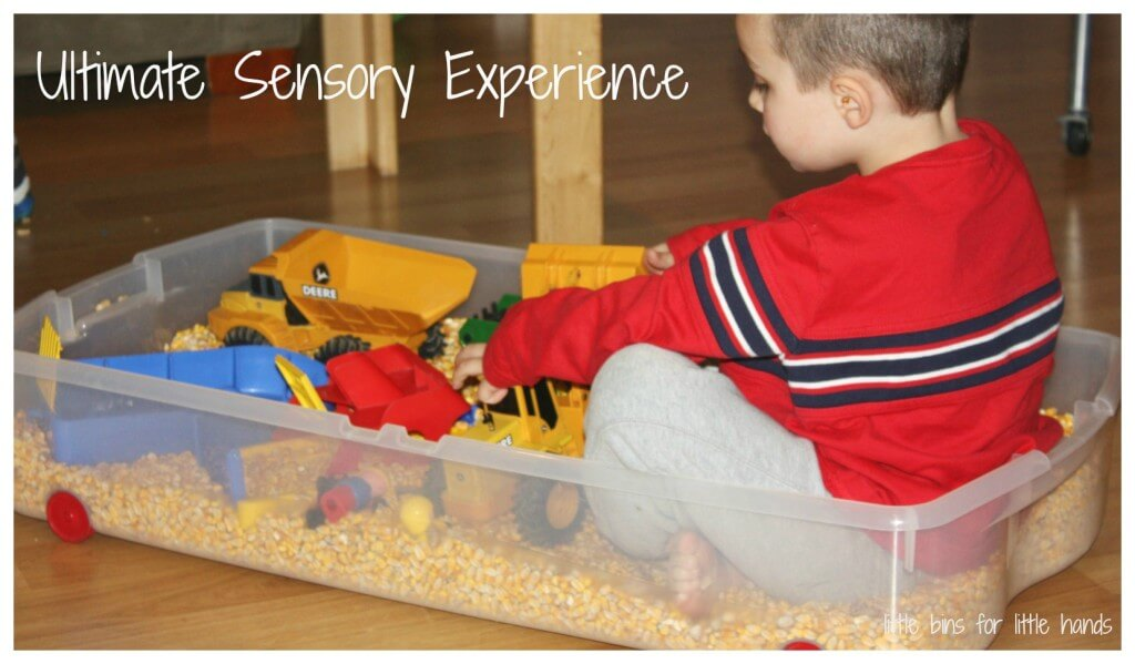 corn sensory play bin sitting in corn ultimate