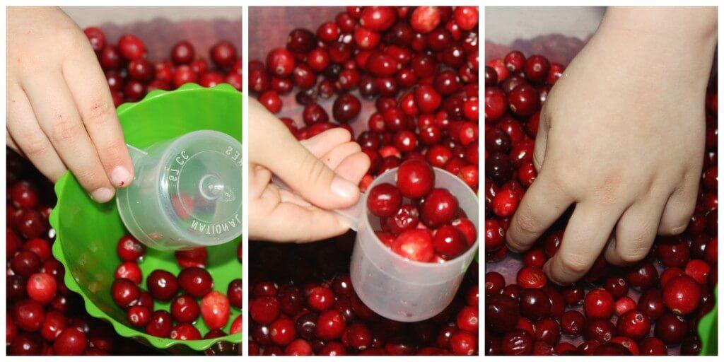 cranberry fine motor skills exploring cranberries