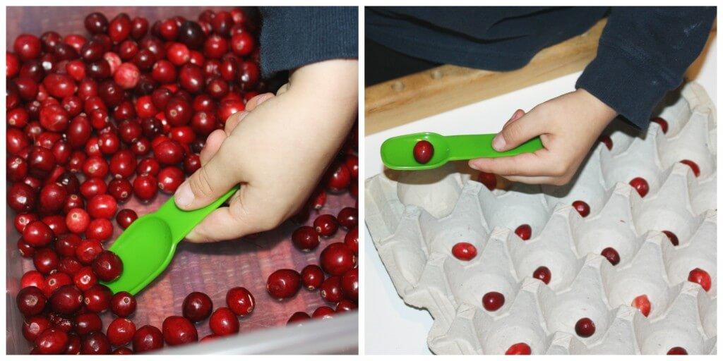 cranberry fine motor skills spoon scoop