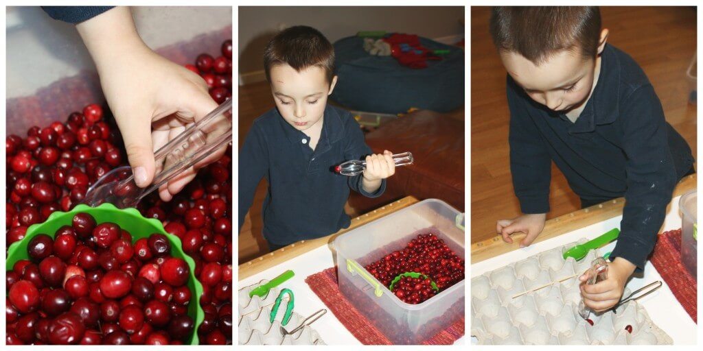 cranberry fine motor skills tongs