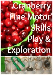 cranberry fine motor skills
