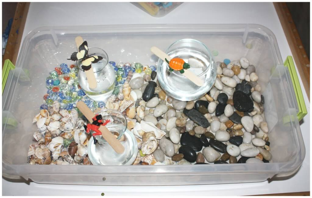 water displacement science experiment sensory bin