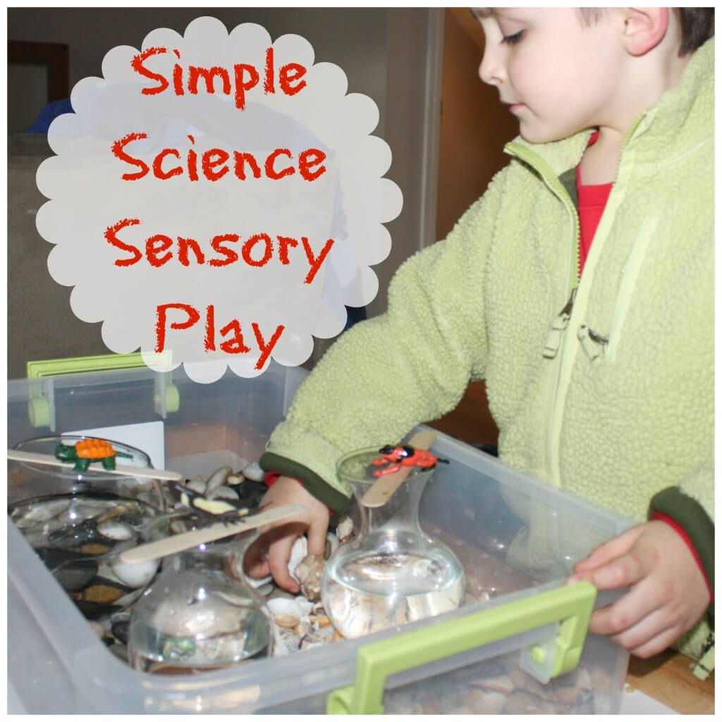 water displacement science experiment simple science sensory play