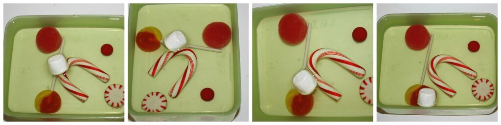 christmas candy science experiment oil