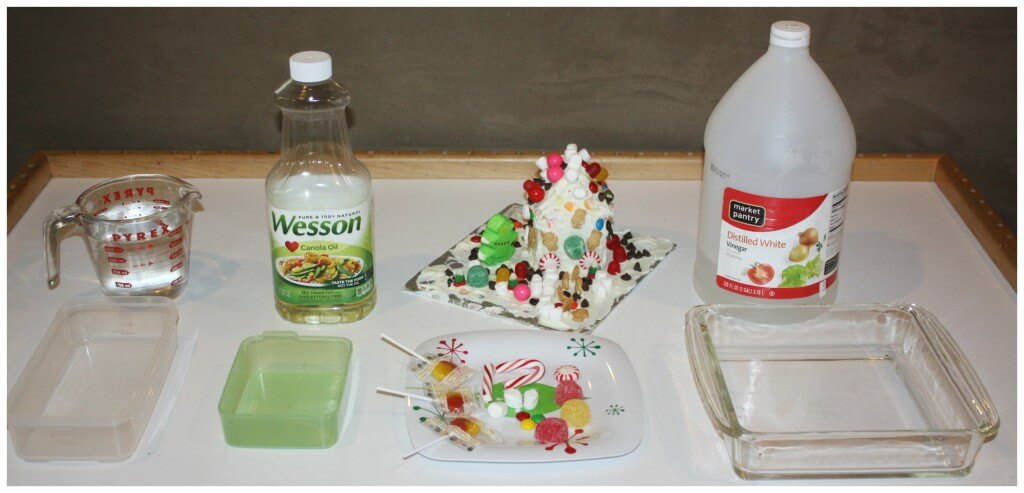 christmas candy science experiment table set up
