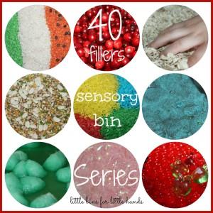 40 Days Sensory Bin Fillers