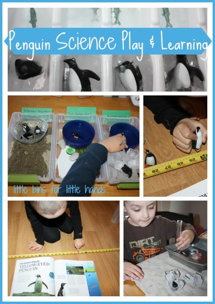 penguin science play learning activity