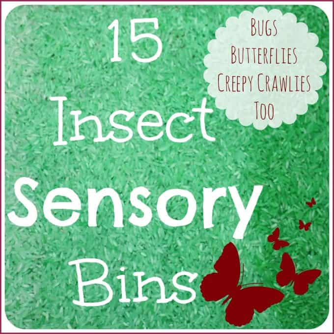 15 Insect Sensory Bins Rice