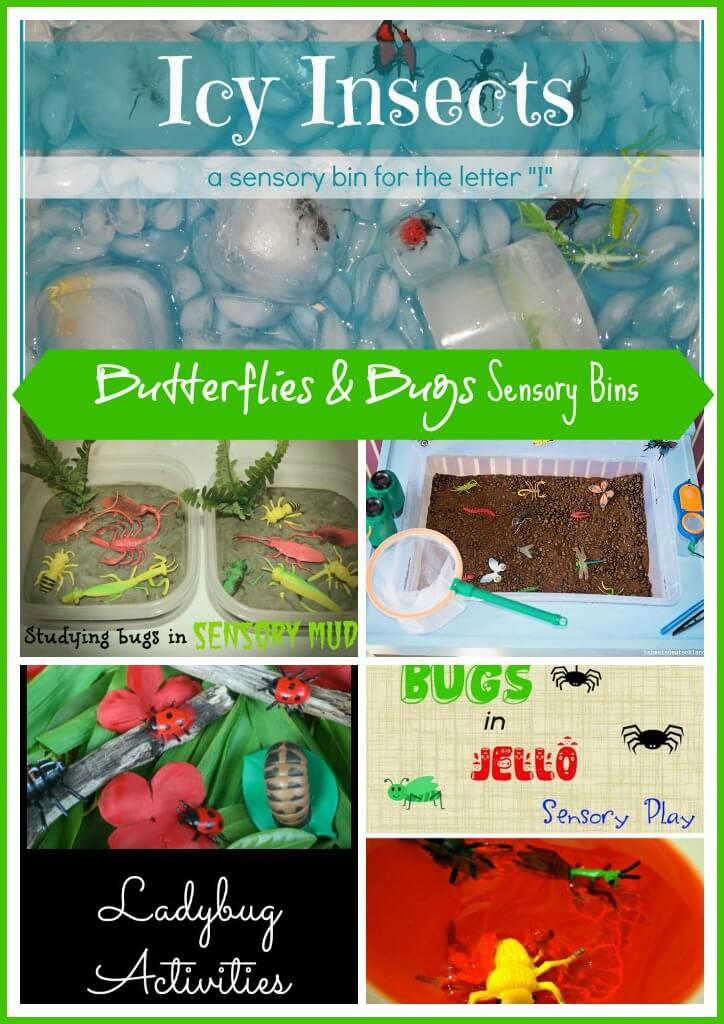 Butterflies and Bugs Sensory Bins 2