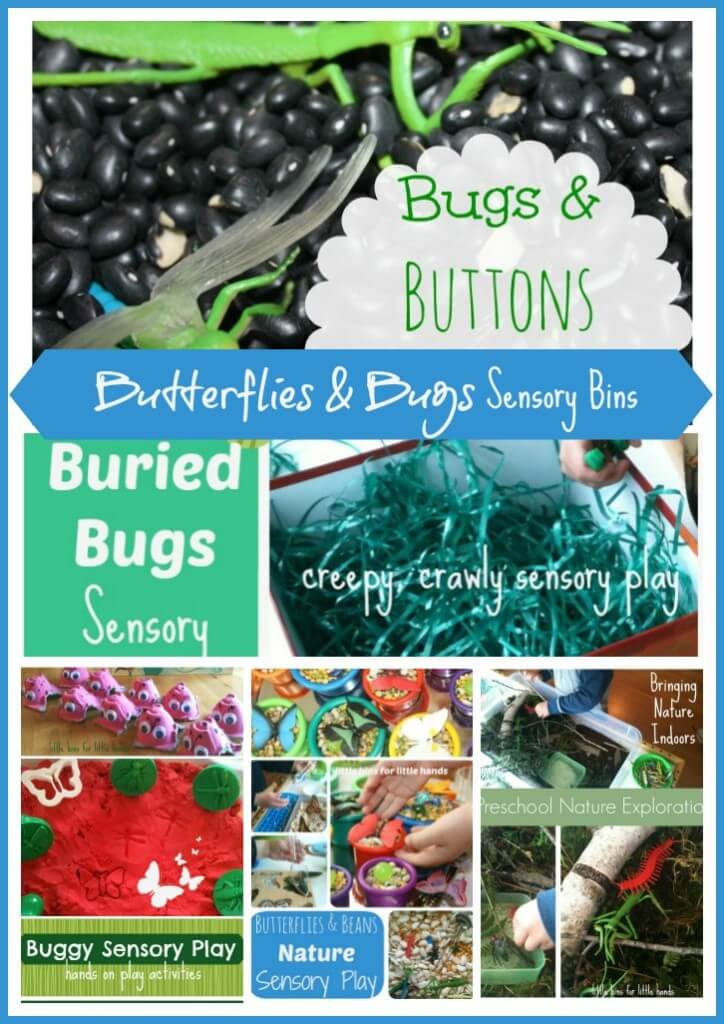 Butterflies and Bugs Sensory Bins Round Up