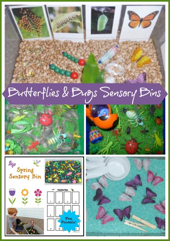Butterflies and Bugs Sensory Bins