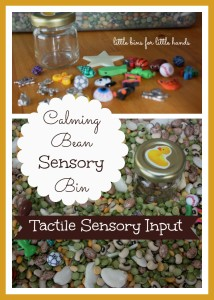 Calming Bean Sensory Bin Activity