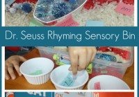 Dr Seuss Sensory Bin Rhyming Activity