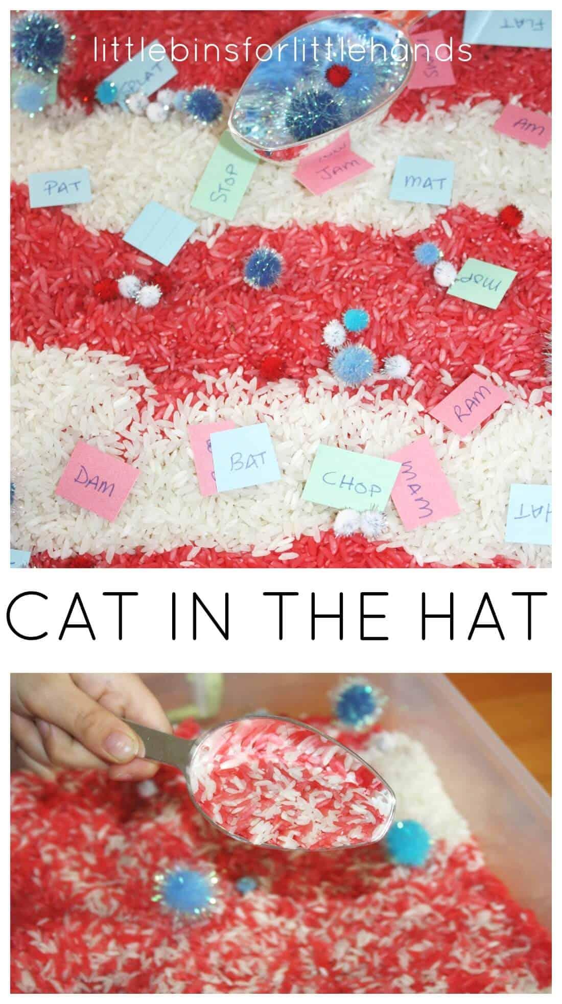 Dr Seuss Sensory Bin Cat In The Hat Rhyming