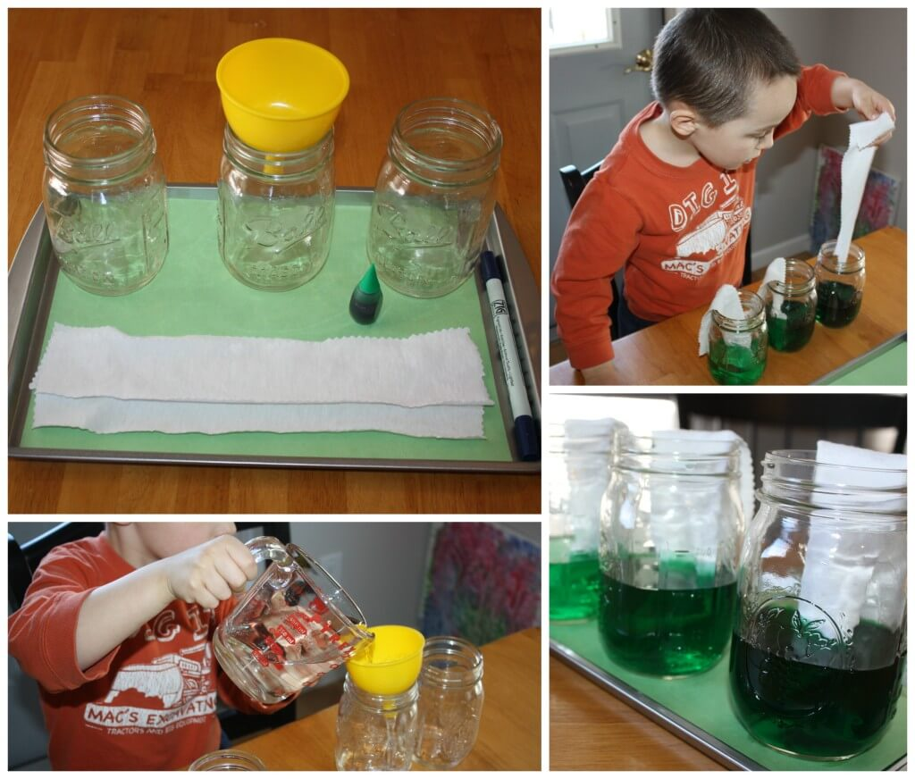 Green color play with water absorption activity