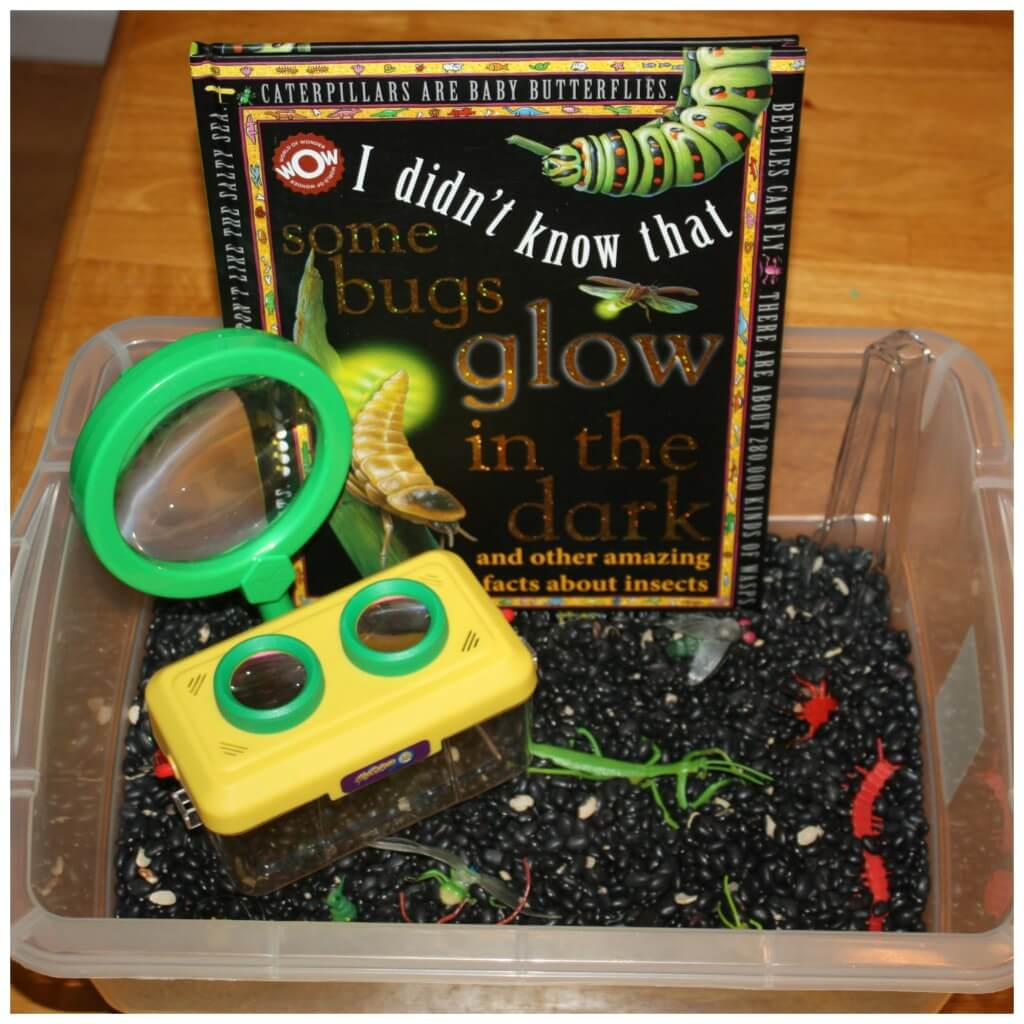 bugs sensory bin and book activity